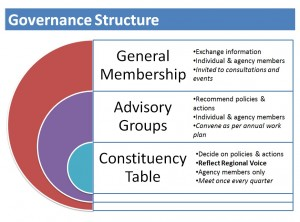 The three levels of the RSCH governance structure
